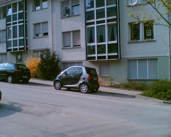 Smart-Kunstparker