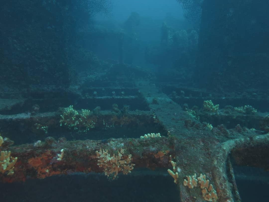 Le Togo, fantastic wreck dive
