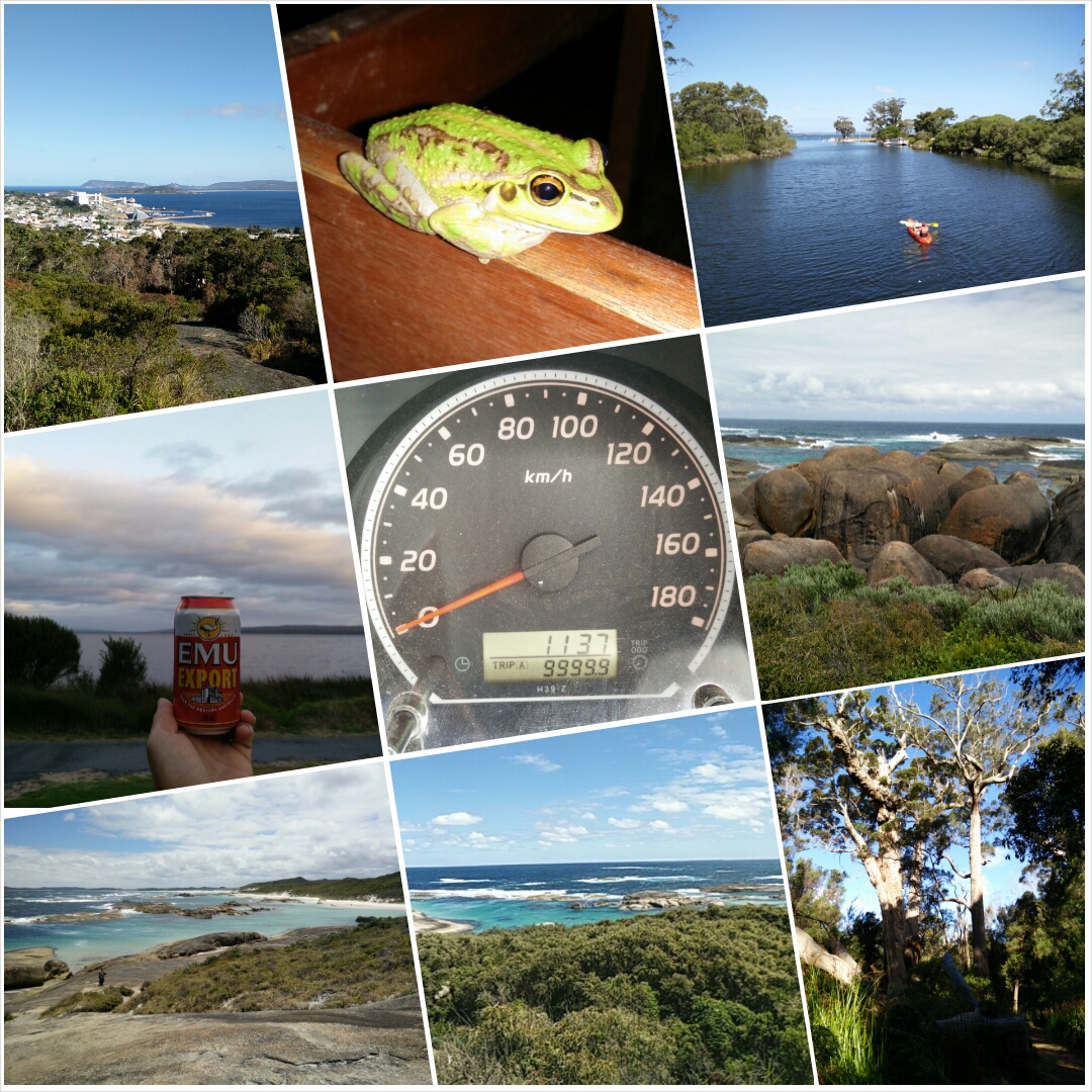 Collage: Albany, Denmark, Elephant Rocks, Valley of the Giants...