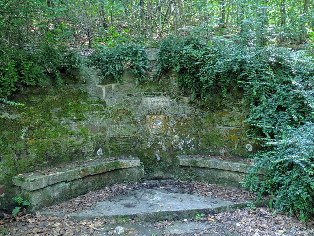 verwilderter Brunnen unterhalb des Waldheims und Waldspielplatz in Berkheim