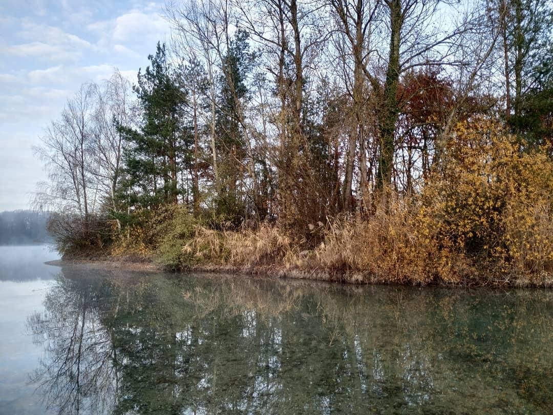 Vorgestern beim Tauchen in Untergrombach am Metzgerallmendsee.